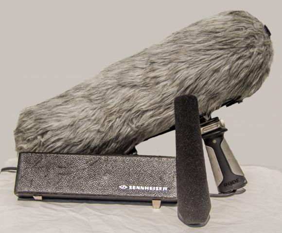Richtmikrofon
